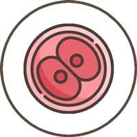 fertile-icon